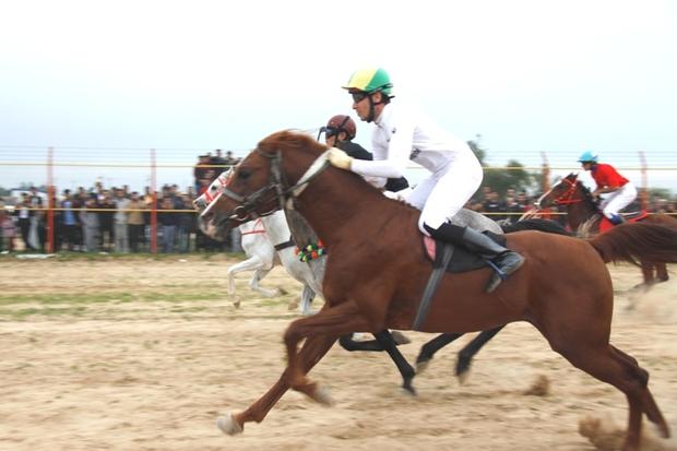 هفته سوم کورس اسب دوانی قهرمانی خوزستان در دزفول برگزار شد