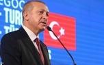 اردوغان «جلیقه زردها» را تهدید کرد