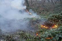 14 هکتار از عرصه های جنگلی دیلمان در آتش سوخت