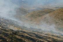 35 هکتار از مراتع نقده بر اثر آتش سوزی نابود شد