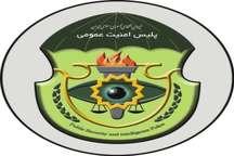 دستگیری سرکردگان اراذل و اوباش در تایباد