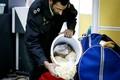 7 کیلوگرم مواد مخدر در فرودگاه تبریز کشف و ضبط شد