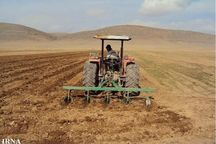 آغاز کشت پاییزه در ۱۹۰ هزار هکتار اراضی خراسان شمالی