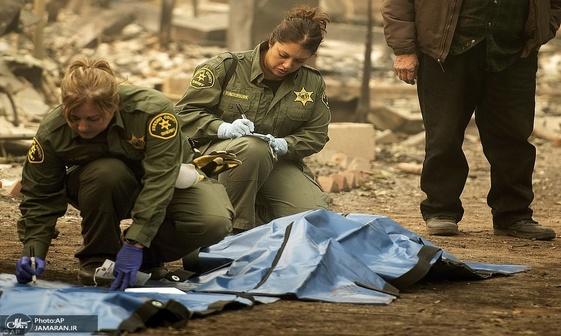 تصاویر/ اشتباه نکنید در کالیفرنیای آمریکا جنگ خانمانسوزی رخ نداده است