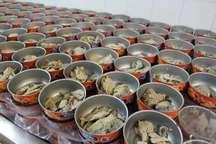 چابهار و کنارک ظرفیت تولید سالانه 268 میلیون قوطی تن ماهی را دارند