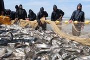 فصل صید ماهی از دریاچه پشت سد ارس آغاز شد