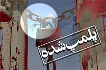 دو واحد آلاینده زیست محیطی در کردستان پلمپ شد