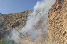 آتش سوزی جنگل ها و مراتع زردوئی شهرستان پاوه مهار شد