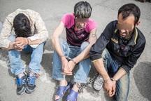 سارقان حرفه ای در اهواز و رامهرمز دستگیر شدند