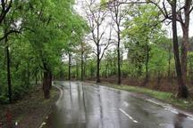 بیشترین بارندگی استان اصفهان در کاشان ثبت شد