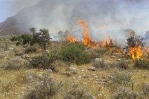 60 هکتار از مراتع سرپل ذهاب در آتش سوخت