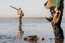 صید و شکار پرندگان از نیمه آبان قانونی می شود