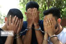سه سارق منزل در بروجرد دستگیر شدند