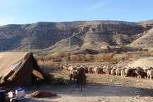 افزون بر 300 کیلومتر جاده عشایری در کهگیلویه احداث و بازگشایی شد