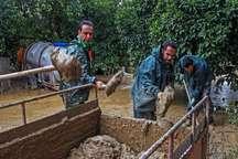 خسارت سیلاب به بخش کشاورزی عمیق است
