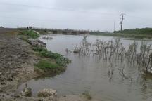رودخانه قره سو در غرب گلستان لبریز آب شد