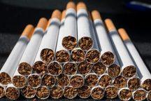 مردان سیگاری 20 برابر غیرسیگاری ها در معرض سرطان ریه قرار دارند