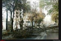 62 خانوار در طوفان گلستان آسیب دیدند  یک نفر جان باخت