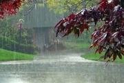بارش های کردستان در سال زراعی جاری 68 درصد افزایش یافت