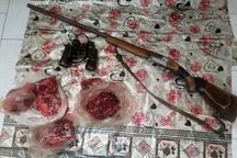 دستگیری شکارچی کل وحشی در طارم سفلی