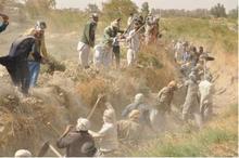 حشر؛ اتحادی سنتی به بلندای تاریخ سیستان
