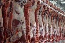 گوشت قرمز ارزان می شود