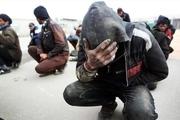 بیش از 200 معتاد متجاهر و خرده فروش در مشهد جمع آوری شدند