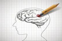 محققان: حافظه را می توان پاک کرد