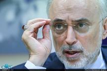 صالحی: ایران در همه زمینههای هستهای قادر به «طراحی» است