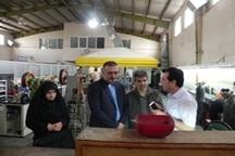 29هزار بازرسی استاندارد از واحدهای صنفی استان یزد انجام شد