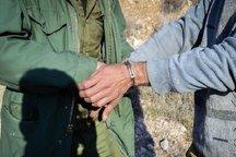 شکارچی متخلف در دامنههای قزوین دستگیر شد