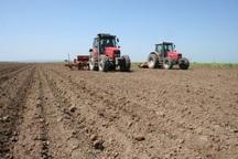 10 هزار هکتار از مزارع مهاباد به کشت بهاره اختصاص یافت