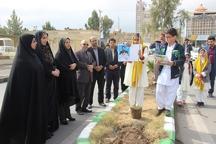 27 نهال به یاد 27 شهید سرافراز مدافع وطن در زاهدان کاشته شد