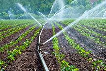اجرای آبیاری تحت فشار در 219 هکتار از اراضی کشاورزی سردشت