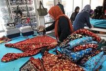 طرح حمایت از مشاغل خانگی در جنوب تهران اجرا شد