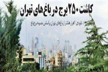 نابودی 4 هزار هکتار از باغهای تهران برای کاشت 250 برج!