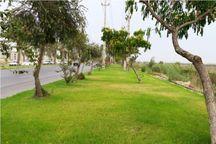 ۲۰ هکتار زمین برای فضای سبز محلههای جنوبی بوشهر تامین شد