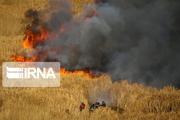 آتش سوزی در ارتفاعات وزکور کوهنانی لرستان
