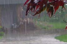 هواشناسی ایلام به زائران اربعین هشدار داد