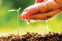 بهره برداری از تکنولوژی برای افزایش بهره وری نهادهای کشاورزی