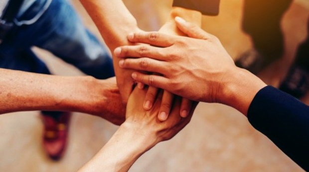 سازمان های مردم نهاد برای حل مسائل انگیزه بالایی دارند