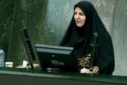 مطرح کردن «تست بسندگی زبان فارسی» با اصل 15 قانون اساسی مغایرت دارد