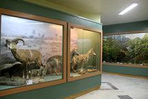 بازدید از موزه محیط زیست اصفهان رایگان است