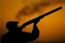 شکارچیان قوچ وحشی در اسفراین دستگیر شدند