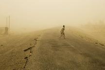 توفان 48 سیستانی را روانه بیمارستان کرد