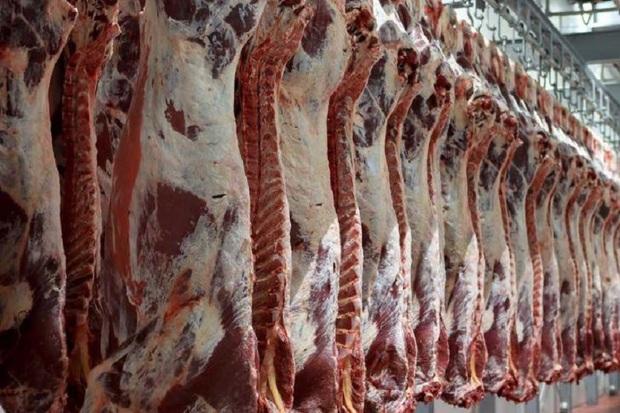 2164 تن گوشت در کهگیلویه و بویراحمد توزیع شد