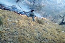 آتشسوزی در 30 هکتار از جنگلهای باشت و گچساران