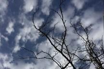 کاهش دما؛ بارندگی و آبگرفتگی معابر در گلستان رخ می دهد