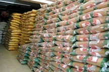 پنج هزار تن شکر در بازار کرمانشاه توزیع می شود