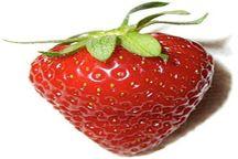بیش از 400 تن توت فرنگی در گیلان برداشت شد